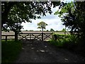SJ7773 : Gate and fallow field by Philip Platt