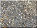 NT0058 : Colliery spoil [detail] by M J Richardson
