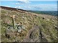 SE0227 : A waymark on the Calderdale Way, Mytholmroyd by Humphrey Bolton