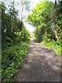 SO8798 : Railway Path Scene by Gordon Griffiths