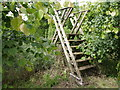 N9153 : Stile at Warrenstown, County Meath by Paddy Smith