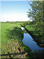 TQ8117 : River Brede by Oast House Archive
