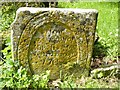 ST8718 : Old grave in St Mary's former churchyard, Compton Abbas by Becky Williamson