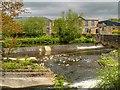 SD7916 : River Irwell, Ramsbottom Weir by David Dixon