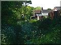 SU8972 : Parker's Lane, Winkfield by Alan Hunt
