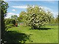 SU9072 : Field, Maiden's Green by Alan Hunt