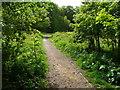 SE1327 : Path in Jagger Park Wood, North Bierley by Humphrey Bolton