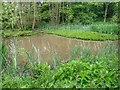 NZ2740 : Houghall Pond by Mick Garratt