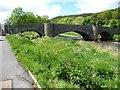 SH9270 : Bridge over the Elwy, Llanfair Talhaiarn, east side by Christine Johnstone