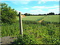 TQ5398 : Public footpath near Navestock Heath, Essex by Malc McDonald