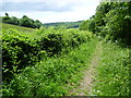 TQ4459 : Footpath next to Church Hill, Cudham by Marathon