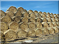 TM2073 : Straw bales neatly stacked : Week 23