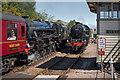 NM8980 : Passing trains at Glenfinnan Station : Week 23