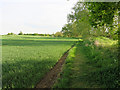 TL3656 : Footpath to Toft by Hugh Venables