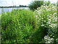 TQ2186 : Path to the Brent Reservoir by Marathon