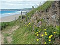 SM8520 : The coast path overlooking Newgale Sands by Robin Drayton