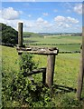SU0328 : Stile, Compton Down by Derek Harper