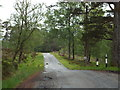 NN2842 : Minor lane near Bridge of Orchy by Malc McDonald