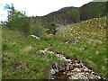 NM9079 : Stream on Meall na h-Airigh, Glenfinnan by Malc McDonald