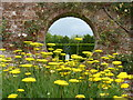 TQ1352 : Hole in the wall, Polesden Lacey by pam fray