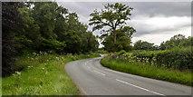 SJ8370 : Salters Lane by Peter McDermott