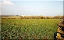 SX2693 : Field east of Maxworthy by Derek Harper