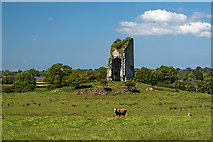 R6362 : Castles of Munster: Rineroe, Clare (1) by Mike Searle