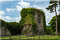 W7898 : Castles of Munster: Castlehyde, Cork by Mike Searle