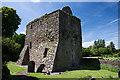 S4935 : Castles of Leinster: Aghaviller, Kilkenny (2) by Mike Searle