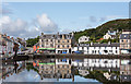 NR8668 : Tarbert, Loch Fyne : Week 28