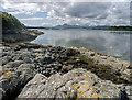 NG7527 : Shoreline of am Ploc - the Plock of Kyle by Julian Paren