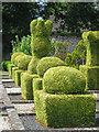 TQ8323 : Frewen College & gardens : Week 29