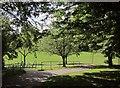 ST5775 : Paths, Redland Green by Derek Harper