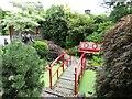 SJ2210 : Oriental Garden at Derwen : Week 30