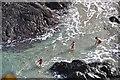 SW6813 : Cornwall : Kynance Cove by Lewis Clarke