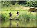 SD5303 : Landing fish at Orrell Waterpark : Week 31