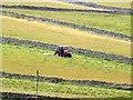 SD9771 : Mowing grass near Kettlewell : Week 31