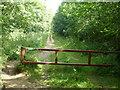 TF0903 : Bridleway in The Severals near Ufford by Richard Humphrey