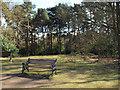 SP1097 : Seat with a view of Bracebridge Pool, Sutton Park by Robin Stott