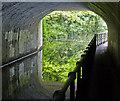 SP1284 : Beneath the Yardley Road Bridge No 86A by Mat Fascione