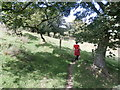 SJ9782 : Footpath near Bollinhurst Brook by Anthony Parkes