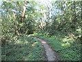 SP6237 : Ashfurlong Lane by Jonathan Thacker