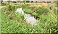 J3773 : The Knock River, Orangefield Park, Belfast (September 2015) by Albert Bridge
