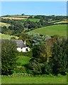 SX8138 : Farmland, Bickerton, Devon : Week 37