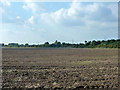 SP9622 : Ploughed field south of A505 by Robin Webster