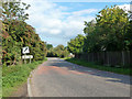 SP9824 : Dunstable Road leaves Tilsworth by Robin Webster