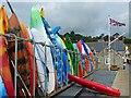 SY3391 : Colourful kayaks, Lyme Regis by Robin Drayton