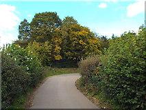 TQ0199 : Chenies Hill by Malc McDonald