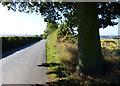SP1694 : Wishaw Lane towards Minworth by Mat Fascione