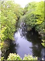 R3389 : River Fergus by Gordon Hatton